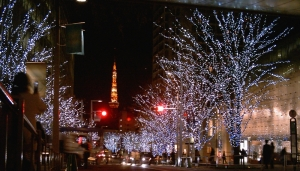 Christmas lights in central Tokyo. The spire in the background is Tokyo Tower.