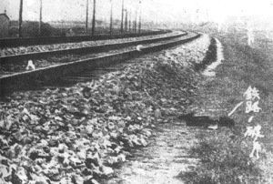 The section of the Mukden rail line where the bomb that triggered the invasion of Manchuria was planted.