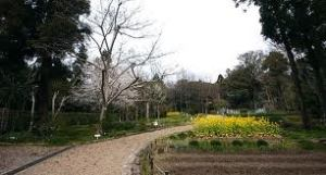 The Manyoshu Botanical Garden at Kasuga Shrine. Courtesy of Japan Guide.org